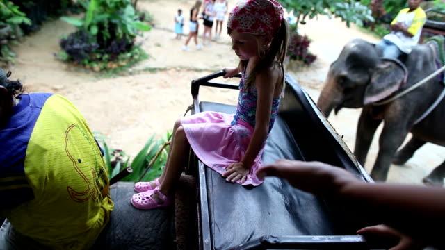 riding on elephants in thailand - タイ王国点の映像素材/bロール