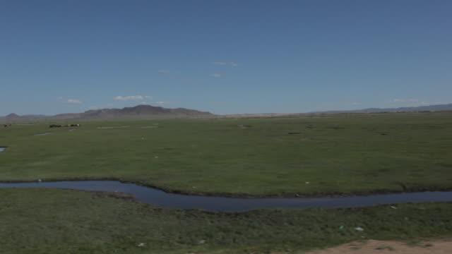 riding through open landscape - liten djurflock bildbanksvideor och videomaterial från bakom kulisserna