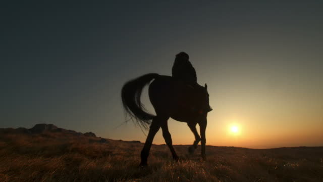 hd: riding through prairie at sunset - recreational horseback riding stock videos and b-roll footage