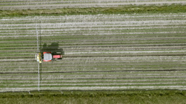 aerial right above a tractor spraying the crops - trattore video stock e b–roll