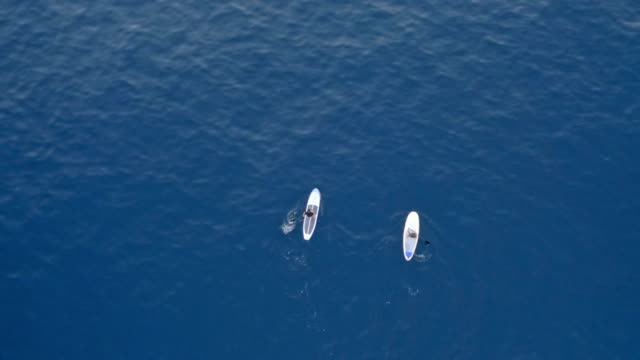 AERIAL Right above two people paddling their SUPs across a calm blue sea