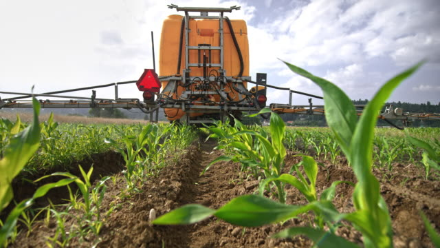 slo mo right behind the boom sprayer spraying crops on the field in sunshine - crop sprayer stock videos and b-roll footage