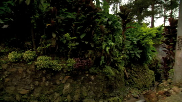 driving on unidentified road in mountains passing rundown houses local stores stone wall covered w/ growing vegetation no people - luzon stock videos & royalty-free footage