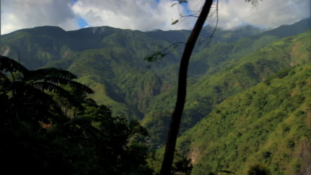 driving kennon road w/ heavily treed slope, mountains beyond, passing banana plants & tropical vegetation in silhouette fg. luzon island,... - tropical fruit stock videos & royalty-free footage