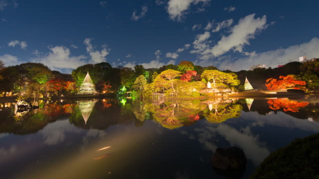 rikugien gardens autumn light up time lapse - show garden stock videos & royalty-free footage
