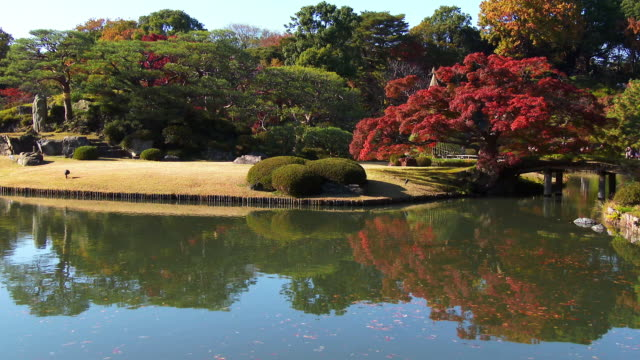 rikugien gardens autumn reflect pond - formal garden stock videos & royalty-free footage