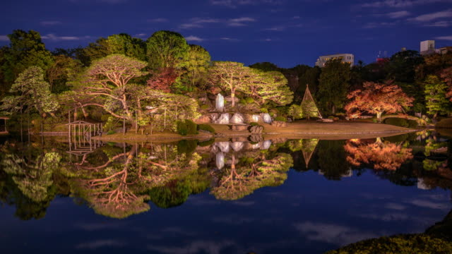 rikugien gardens tree reflect in pond at night, timelapse - satoyama scenery stock videos and b-roll footage