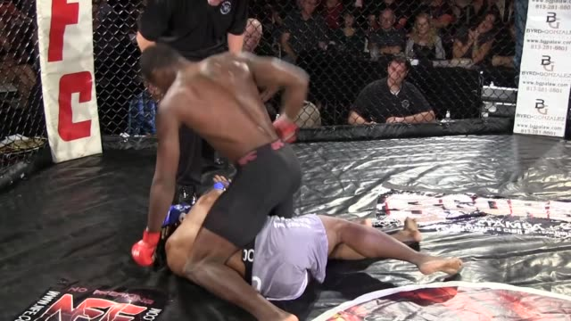 / ring footage of ultimate fighting contest two african american fighters one body slams other fighter to the ground then he sits on him and... - mixed martial arts stock videos and b-roll footage