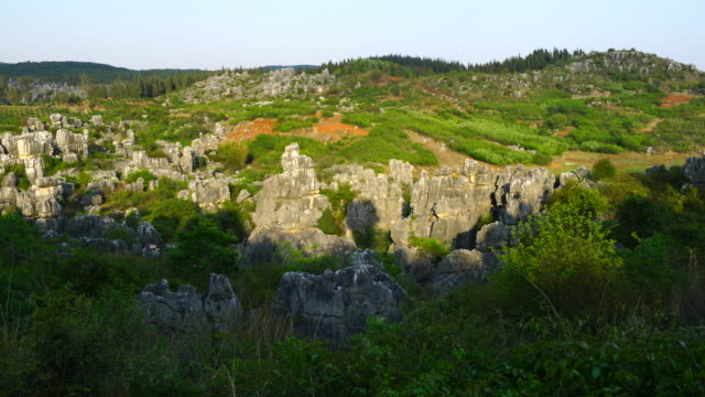 vídeos de stock, filmes e b-roll de ring itinerary among formations of limestone, the stone forest, shilin yi autonomous county, yunnan province, china, asia, unesco world heritage site - yunnan province