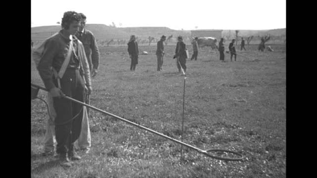 ring of metal detector up and down over spot / operator wears head phones as he searches / he hovers over one spot, another man marks it with sticks,... - world war ii video stock e b–roll