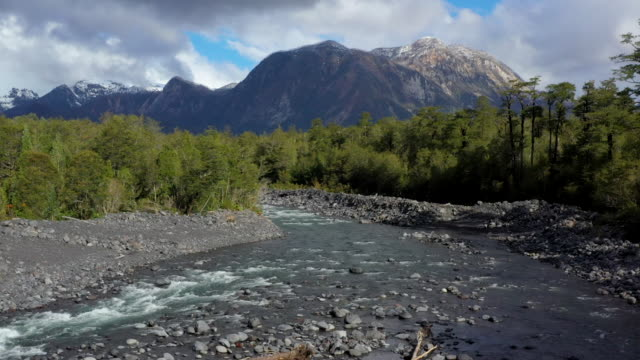 rio blanco river, pumalin national park, patagonia, chile - national park stock videos & royalty-free footage