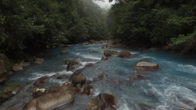 aerial rio celeste with surrounding rainforest in fog - rapid stock videos & royalty-free footage