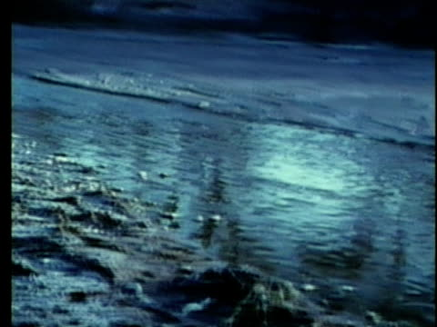stockvideo's en b-roll-footage met 1963 reenactment ws pan rio grande border between republic of texas / audio and mexico / republic of texas / audio - manifest destiny