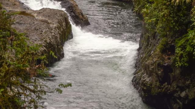 rio hollin in orellana province, ecuador - ecuador stock videos & royalty-free footage