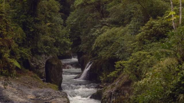 rio hollin in orellana province, ecuador - wide shot stock videos & royalty-free footage