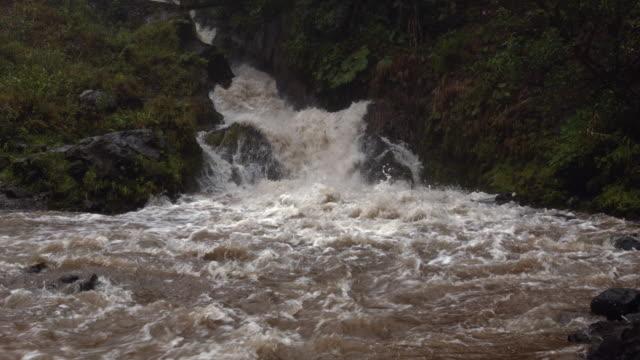 rio reventador, ecuador in flood during a severe rainstorm - ecuador stock videos & royalty-free footage