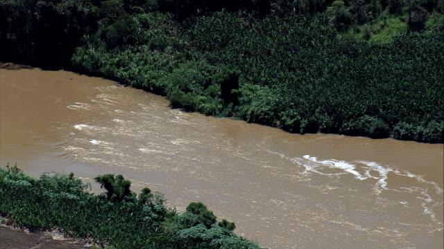 vídeos de stock, filmes e b-roll de rio ribeira de iguape-vista aérea-são paulo, brasil - riacho