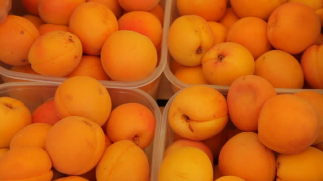 cu ld ripe apricots for sale in market / venice, italy - apricot stock videos & royalty-free footage