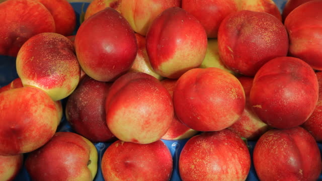 cu ld ripe nectarines in market / venice, italy - peach stock videos & royalty-free footage