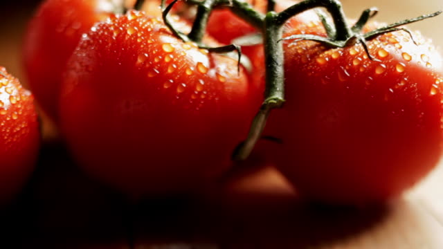 stockvideo's en b-roll-footage met ripe tomatoes glisten with water droplets. - rijp voedselbereiding