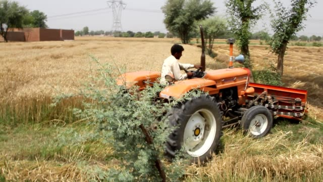 ripping wheat crop with ripper fixed on tractor - multan stock videos and b-roll footage
