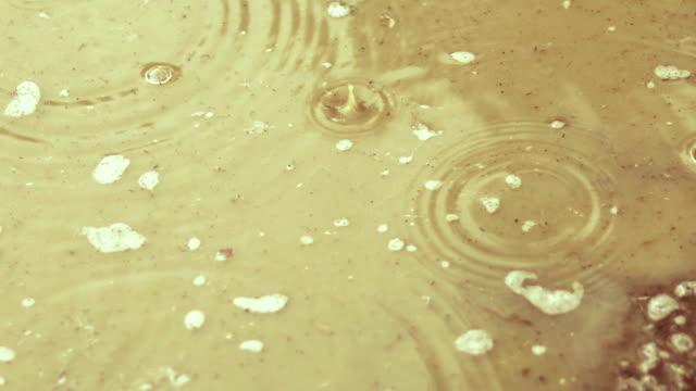 vídeos de stock, filmes e b-roll de gotas e bolhas rippled da chuva - pingo de chuva