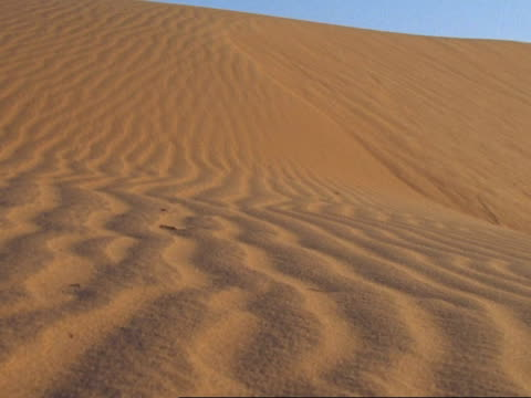 mcu rippled sand of sand dune, oman - low angle view stock videos & royalty-free footage