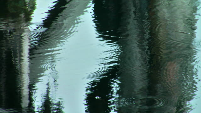 ripples from raindrops - rippled stock videos & royalty-free footage