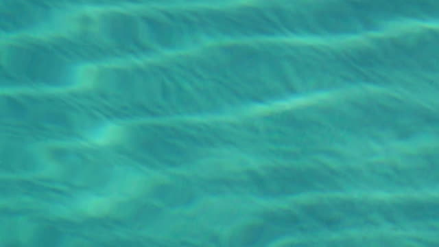 Ripples in the Pool