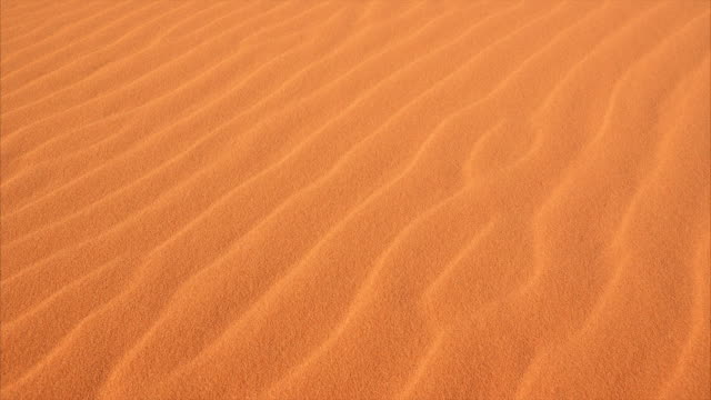 Ripples in the Sand at Coral Pink Sand Dunes State Park