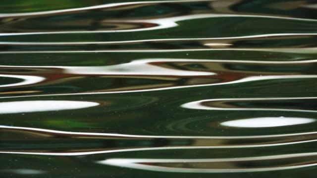 ripples of water - water surface stock videos & royalty-free footage