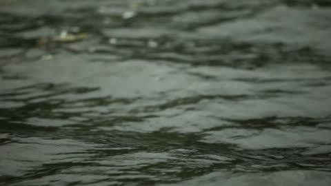 ripples on dark water - north stock videos & royalty-free footage