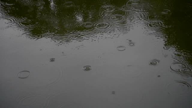 vidéos et rushes de ondulation de la surface de l'eau - sol caractéristiques d'une construction
