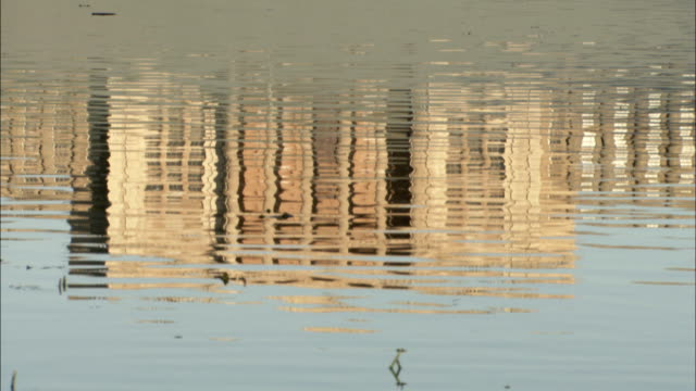 a rippling lake reflects stowe house in buckinghamshire, england. available in hd. - frontgiebel stock-videos und b-roll-filmmaterial
