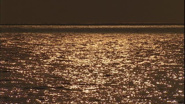 A rippling ocean reflects a golden sky.