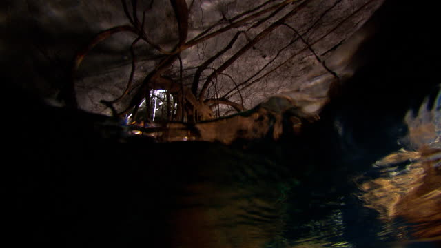 rippling water reflects on the ceiling of an underwater cave. available in hd. - バハマ点の映像素材/bロール