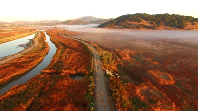 vídeos de stock e filmes b-roll de rise shot of amazing fall meadow colors at sunrise with low fog - dirt road
