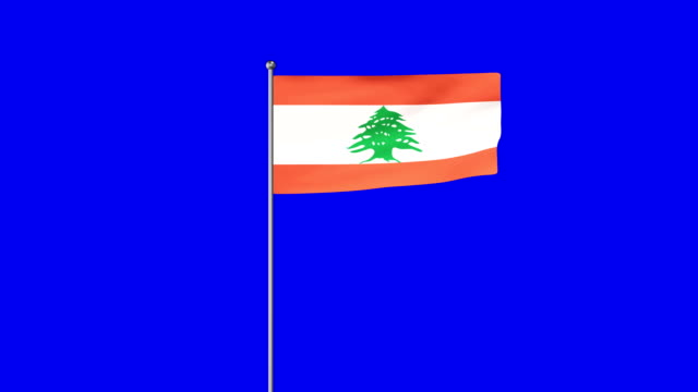 rising flag of lebanon - lebanon country stock videos & royalty-free footage