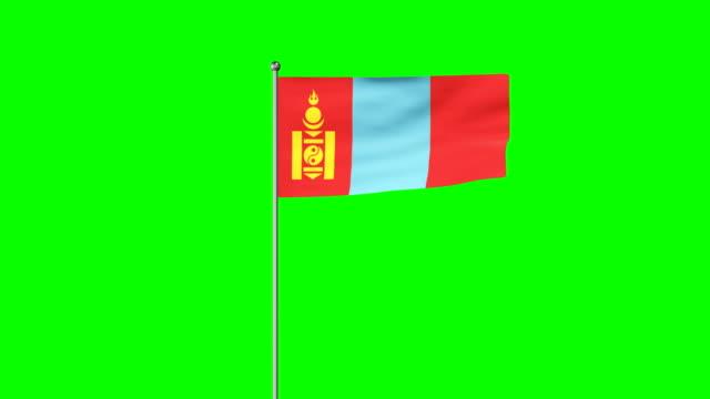モンゴルの立ち上がり旗 - 旗棒点の映像素材/bロール