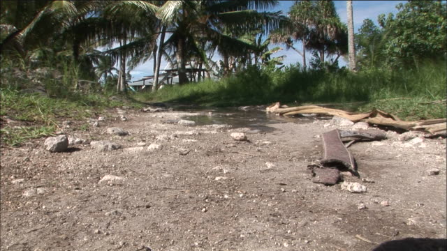 rising sea tide causes water to gush from ground and spread down road, funafuti, tuvalu; feb 06 - pacific ocean stock videos & royalty-free footage