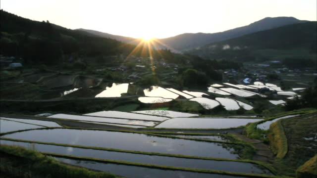A rising sun casts sunbeams across the Sakaori Rice Terraces in Japan.