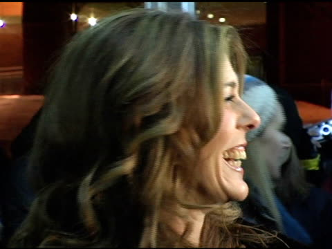 rita wilson at the 2005 sundance film festival 'chumscrubbers' premiere at the eccles theatre in park city, utah on january 25, 2005. - park city stock videos & royalty-free footage