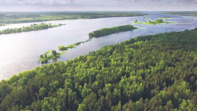 floden och skogen - flygfoto - ekoturism bildbanksvideor och videomaterial från bakom kulisserna