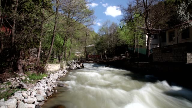 river and forest - eastern european culture stock videos & royalty-free footage