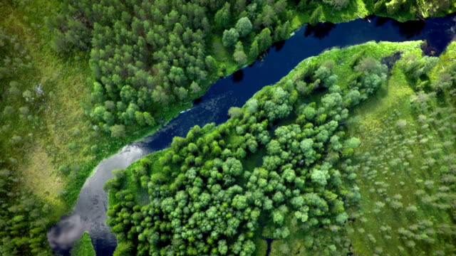 aerial: river and forest wilderness in sweden - boreal forest stock videos and b-roll footage