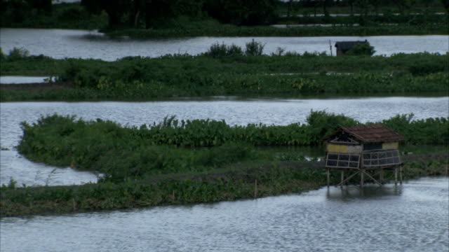 a river and lush vegetation surrounds a stilt house. available in hd. - stilt house stock videos & royalty-free footage