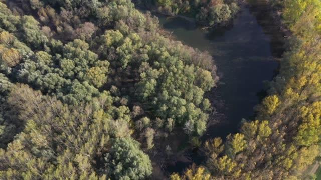 fluss und bäume antenne überführung - ungarn stock-videos und b-roll-filmmaterial