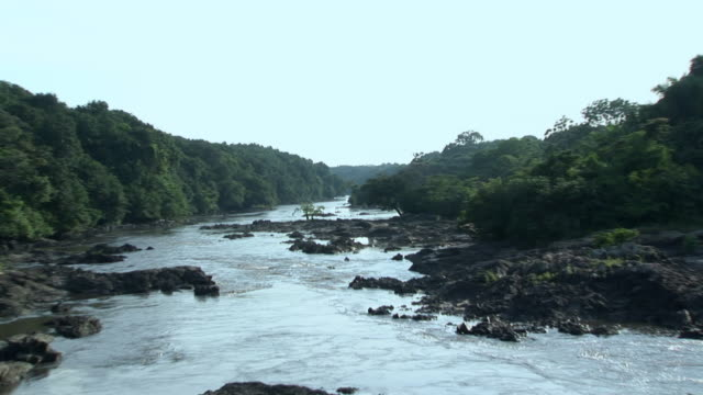 ws zi river and vegetation, virunga national park, national park, congo - nationalpark stock-videos und b-roll-filmmaterial