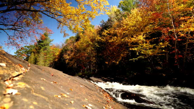 river and waterfall in autumn forest nature - rock stock videos & royalty-free footage