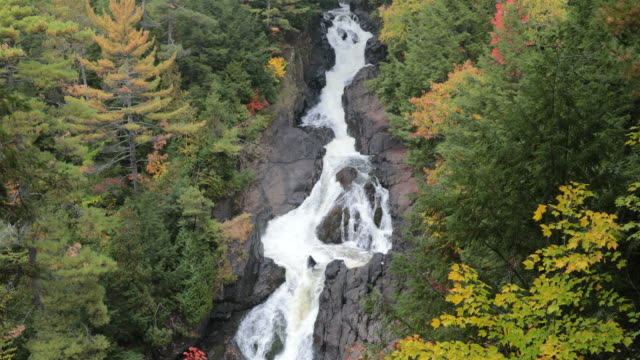 River and Waterfall in Forest Nature, Quebec, Canada